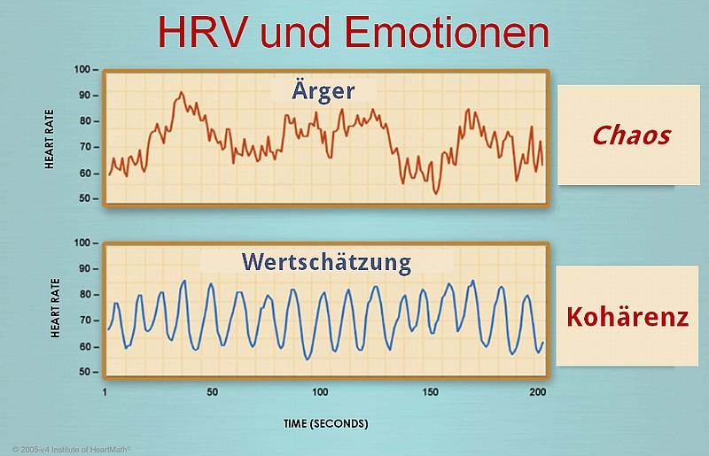 Mehr erfahren HRV   die Sprache des Herzens